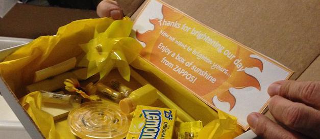 Zappos Sunshine Box
